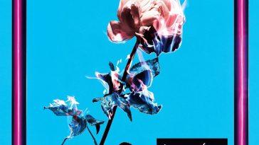 lenny-code-fiction-flower