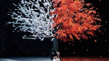 aimer-akane-sasu-everlasting-snow